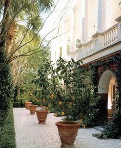 "mesogeios: "" William Gatewood House, Restored by Gil Schafer """