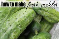 {Recipe} How to Make Cold Process Dill Pickles from Fresh Cucumbers ~ Creative Green Living
