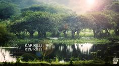 Karikilli is a free for all beautiful bird sanctuary just a few kilometres away from Vedanthangal, Tamil Nadu, India