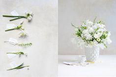 dietlind wolf: aprilflowers