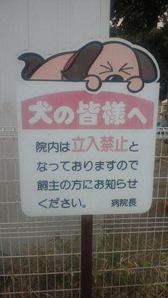 初笑いに誘う刺客、6度目の参上「VOWなニッポン」。 | POO-MONOLOGUE
