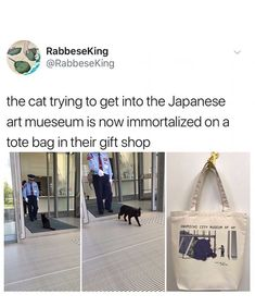 This is the sort of energy I admire on Japan. Funny Cute, The Funny, Hilarious, Animal Memes, Funny Animals, Cute Animals, Cat Memes, Funny Memes, Tumblr Funny