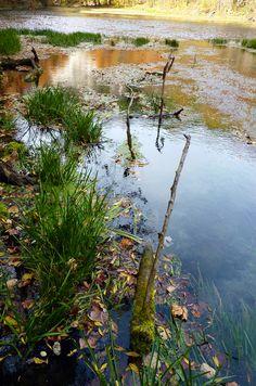 Ha Ha Tonka Springs in Mid-October. Lake of the Ozarks, Missouri