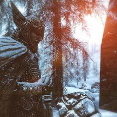 7 Best Art images in 2016 | Bethesda games, Elder scrolls