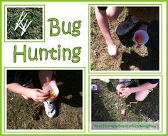 Bug Hunting Activity -  Pinned by @PediaStaff – Please Visit http://ht.ly/63sNt for all our pediatric therapy pins