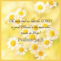 Psalm 34:8 KJV  God bless you Cheryl. Ly