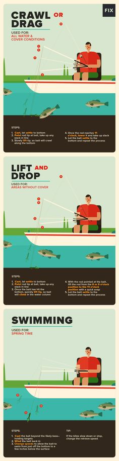 A Guide to Bass Fishing the Texas Rig