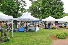 When visiting the area, make sure to plan a visit to one of our local farmers markets, and enjoy the fresh, locally produced goods of Cape Cod, Nantucket and Martha's Vineyard. Cape Cod Vacation, Truro, Falmouth, Whale Watching, Nantucket, The Fresh, Farmers Market, Gazebo, Vineyard