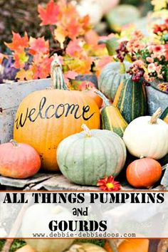 Pumpkin and Gourd Fall Decorating Ideas for Autumn