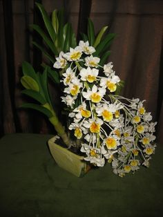 Dendrobium orchids tutorial