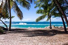Beach, Palm Trees, Sand, Ocean, Sea
