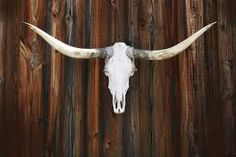 Image result for weathered LongHorn