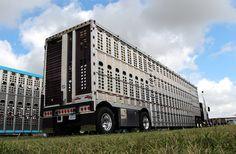 bull haulers school - Google Search