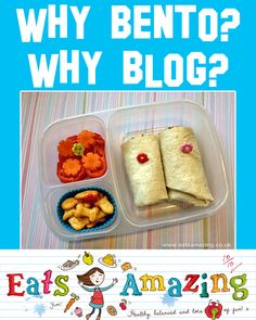 Why Bento? Why Blog? One lunch blogger's reply to the naysayers. Read the full post by @eatsamazing here: http://eatsamazing.co.uk/general-posts/why-bento-why-blog