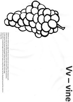 Vv Vine (page 1 of 3) paper craft for Letter of the Week.  Colour in, cut out and glue grapes and leaves onto the vine.