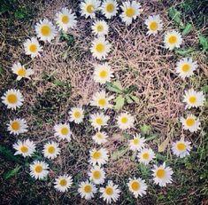 B O H E M I A N ☮ ❁ ғollow ↠ ↞ on pιnтereѕт & ιnѕтagraм ғor мore ιnѕpιraтιon ☪ ☆ bohemian Hippie love