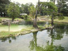 Hart Springs, Florida