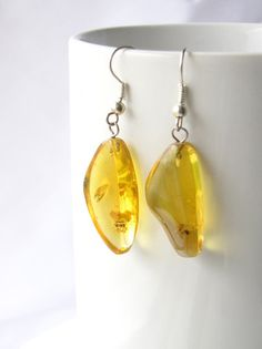 Mexican amber with encased insects polished and made into earrings.
