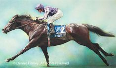 An amazing painting of 'So You Think' by Denise Finney www.denisefinney.com