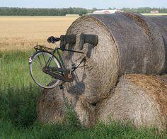 Fun At The Farm Denmark #bicycles, #bicycle, #pinsland, https://apps.facebook.com/yangutu