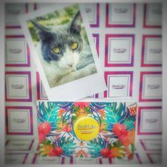 Álbum portatil BookLike Mini,imágenes 9 x 6 cm 😍