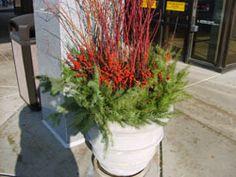 Winter planter display container gardening Pinterest Winter