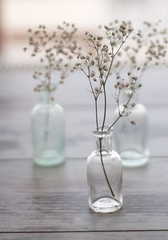Wedding Ideas: babies-breath-simple-centerpieces This with like test tubes or beakers? Bottles And Jars, Glass Bottles, Glass Vase, Small Bottles, Mini Bottles, Perfume Bottles, Deco Floral, Arte Floral, Coastal Wedding Inspiration