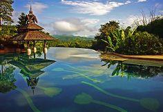 Na Tailândia a piscina com tulipas desenhadas pelo revestimento, oferece uma vista incrível para Laos e a Birmânia