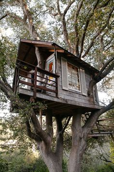 Tree House Design Ideas 42