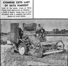 25 Best Agriculture Vintage Advertising images in 2016 | Vintage