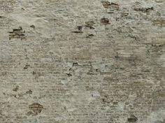 Vinyl wallpaper ATTIC NO.12 by Concrete Wall™ - Tom Haga design Tom Haga