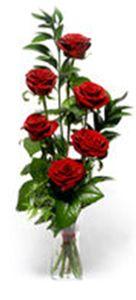 florerias en monterrey