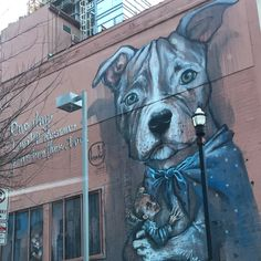 #covernashville #streetart #art #mural #dog #puppy #rescue #rescuedog #adopt #nashville #downtown