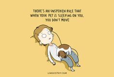7 Illustrations That Perfectly Sum Up Life With A Dog