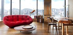 Designer Suite and View