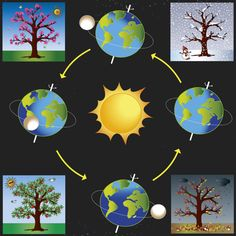 Graphic of four seasons : ☀️🌸 Spring, 🌞🍎 Summer, ⛈🍁 Autumn~Fall, 🌨☃️Winter Science Projects For Kids, Science Activities For Kids, Preschool Science, Montessori Activities, Science Experiments Kids, Science Classroom, Science Lessons, Preschool Activities, Earth Seasons