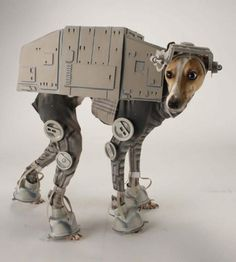 Greyhound dog dressed like an AT-AT walker from the empire strikes back #DogCostume #HalloweenDogs #Halloween