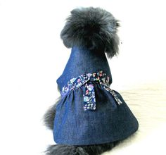 Small Dog Pet Clothes Denim Made to Order by BloomingtailsDogDuds