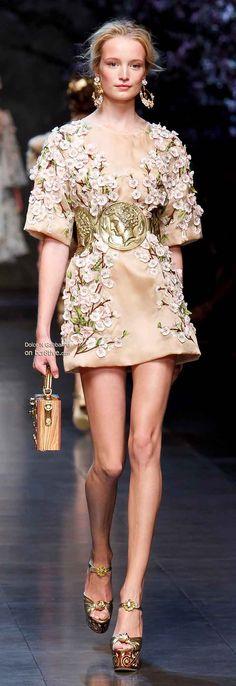 Dolce & Gabbana Spring 2014 En el siglo xix , el nombre alta costura era protegido y solo podia usarse por empresas que cumplieran unos estandares definidos