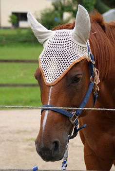 Ravelry: Ohrengarn für Pferde/fly bonnet for horses pattern by Natascha Reim