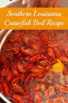 Uncle Gene's Louisiana Crawfish Boil Crawfish are an important part of Louisiana's Cajun food culture--you'll spot them at every spring party and celebration! Here's a lesson in Crawfish 101 PLUS my Uncle Gene's spicy Louisiana crawfish boil recipe. Louisiana Crawfish Boil Recipe, Crawfish Boil Seasoning, Crawfish Recipes, Seafood Boil Recipes, Louisiana Recipes, Cajun Recipes, Seafood Dishes, Cooking Recipes, Cajun Crawfish