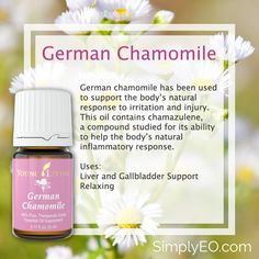 German chamomile has been used to support the body's natural response to irritation and injury. This oil contains chamazulene, a compound studied for its ability to help the body's natural inflammatory response.