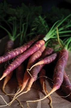 Best Heirloom Carrot Varieties