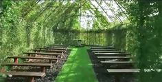 Tree Church, New Zealand, Living Church, Church made of trees, botanical, Barry Cox, Treelocations, botanical design, green design, sustainable design, eco-design, biomimicry, labyrinth, Tree Church Gardens