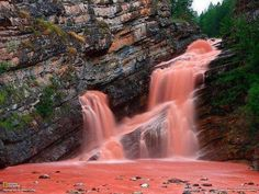 Cameron Falls, in Alberta, Canada     Incredibly rare moment: a waterfall turned tomato soup red. The red coloring of the water is a result of heavy rainfall washing sediment into the river.