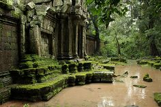 Angkor temple ruins in Cambodia Abandoned Buildings, Abandoned Places, Jungle Temple, Uncharted Series, Temple Ruins, Environment Concept, Ancient Ruins, Breath Of The Wild, Fantasy Landscape