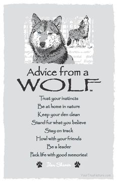 Advice from a wolf:  Trust your instincts.  Be at home in nature.  Keep your den clean.  Stand fur what you believe.  Stay on track.  Howl with your friends.  Be a leader.  Pack life with good memories!  (Posted to my page 10/3/16.)