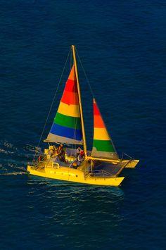 Catamaran cruising on Waikiki Beach, Honolulu, Oahu, Hawaii, USA - Seatech Marine Products / Daily Watermakers