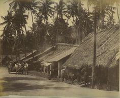 Bengal Village Scene - India c1880's