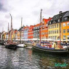 Copenhagen's harbor has been thoroughly cleaned in the past decade: It's so clean that the inner harbor is now clean enough to swim in.  Copenhagen was once a walled city where passage was only possible at one of the town's three 'ports'  Vesterport Østerport and Nørreport. ------------------------------------------http://ift.tt/1LUVJlw ------------------------------------------ #travel #norreport #copenhagen #timeoutlondon #denmark #køpenhavn #picoftheday #danish #travelstoke #culture…